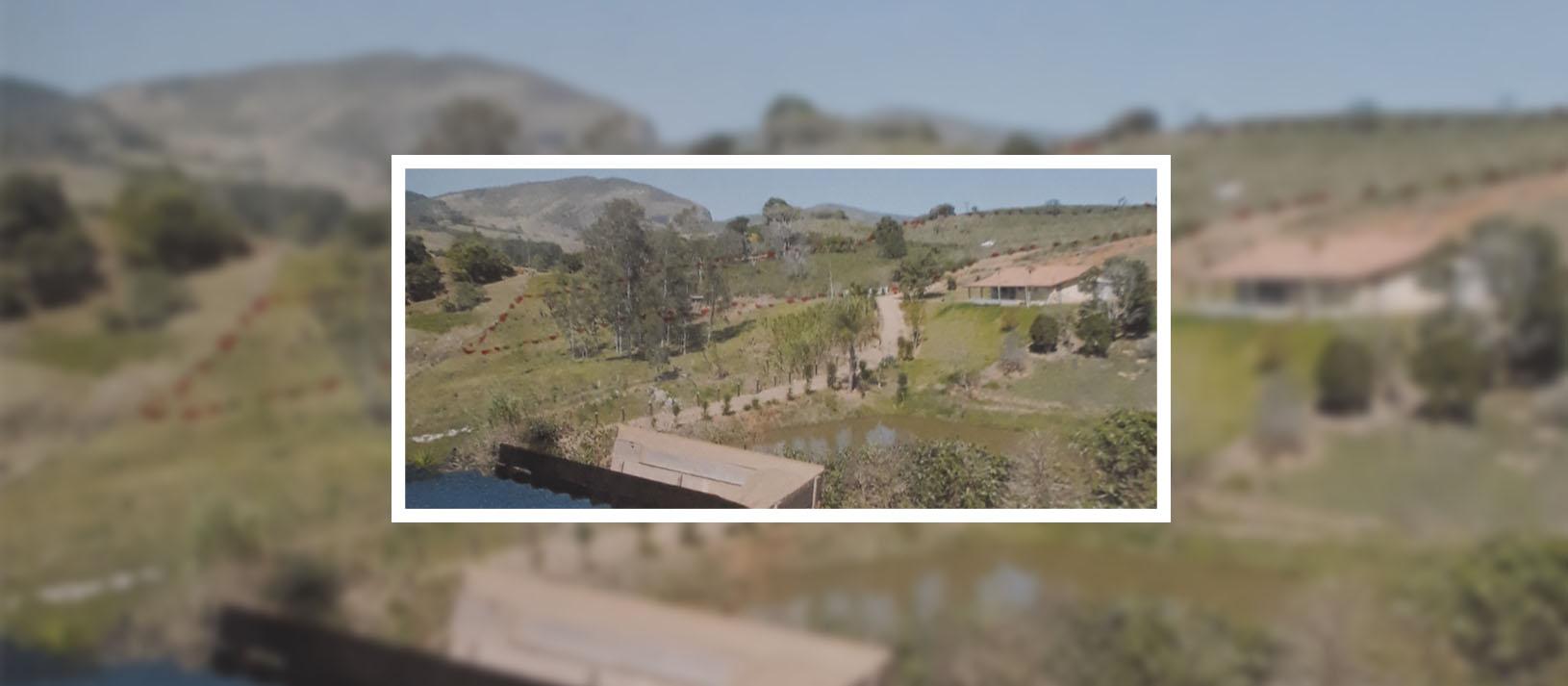 Leilão de Imóvel Rural em Minas Gerais: Preparado para plantio de café
